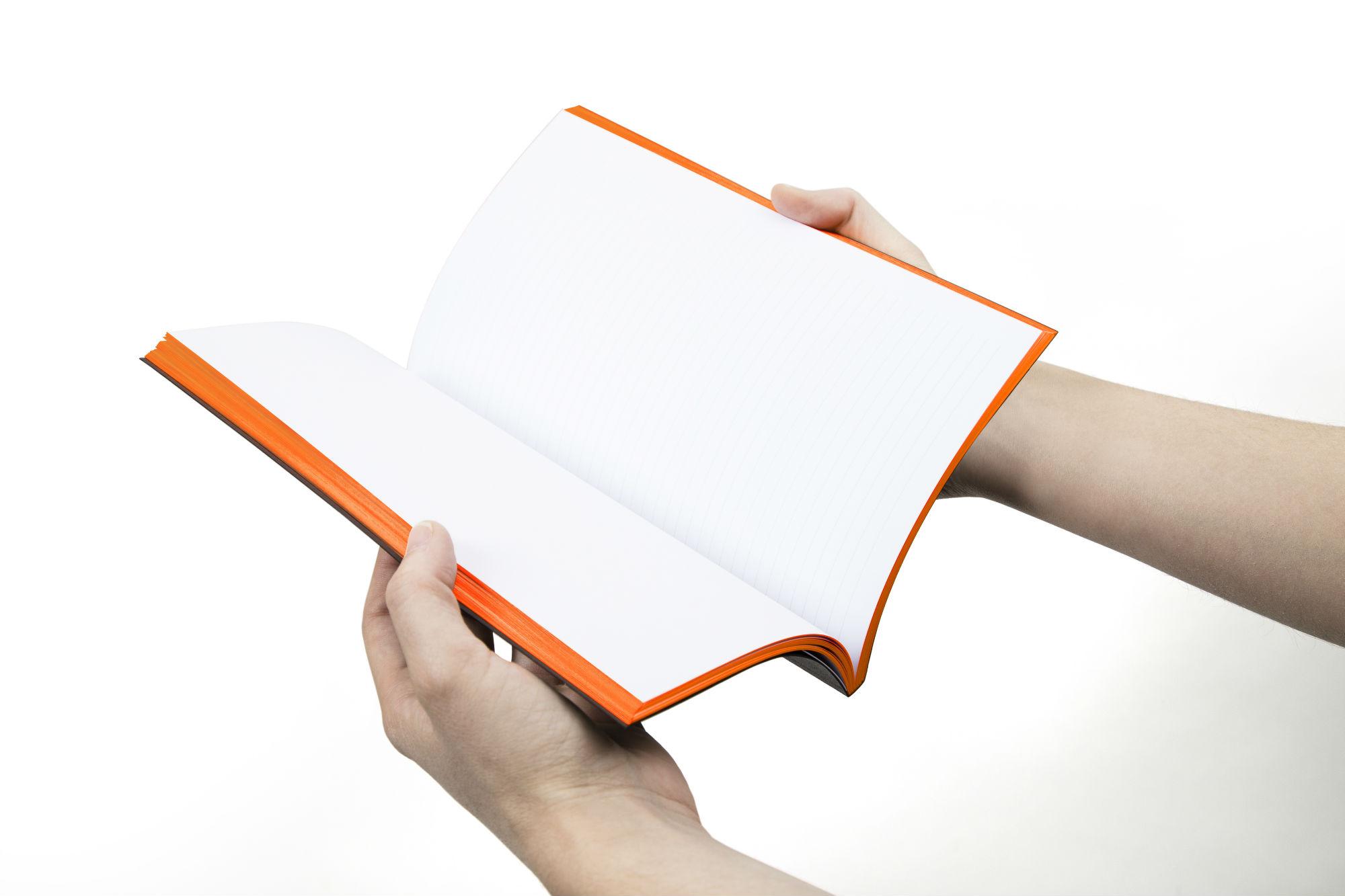 Carnet mypaperbook en main